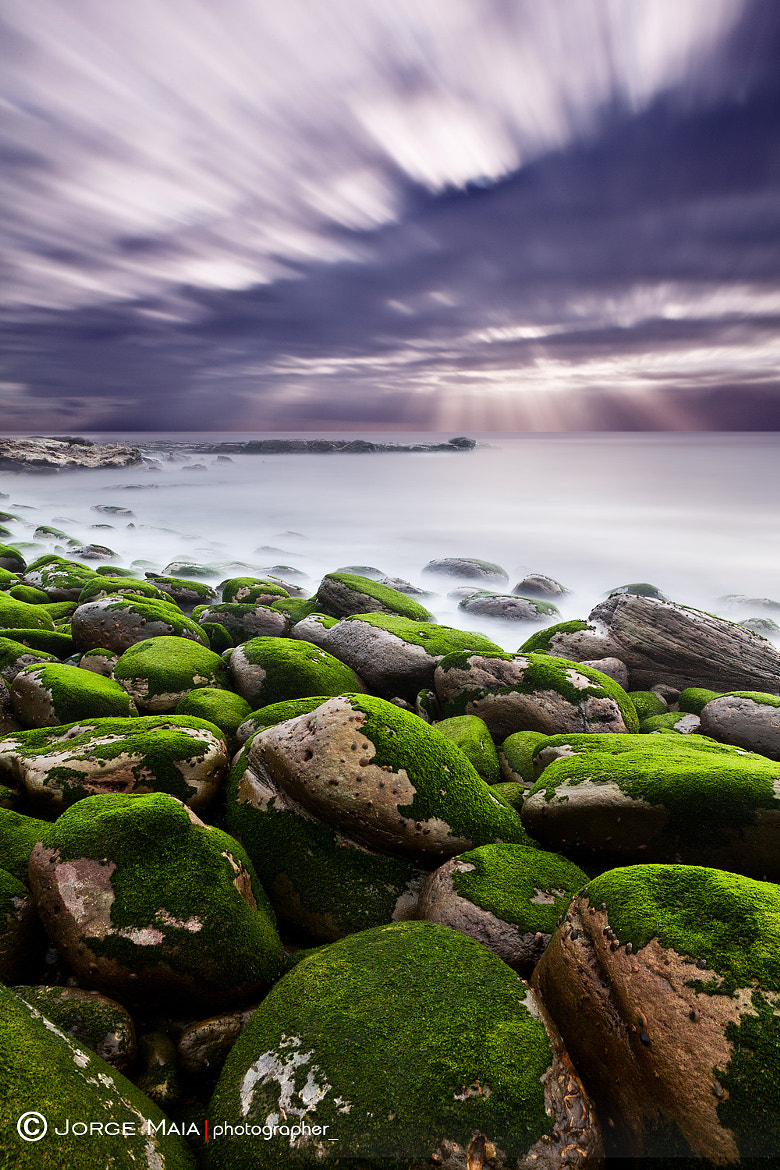 Photograph Light  by Jorge Maia on 500px