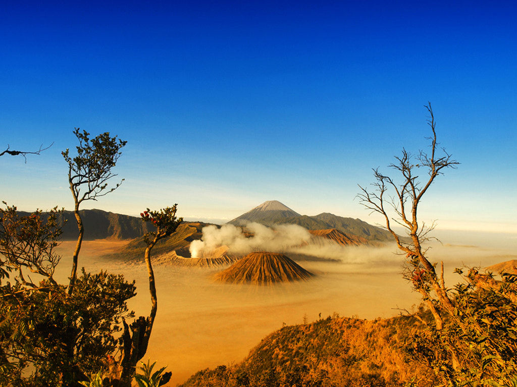Photograph Bromo by aprison aprison on 500px