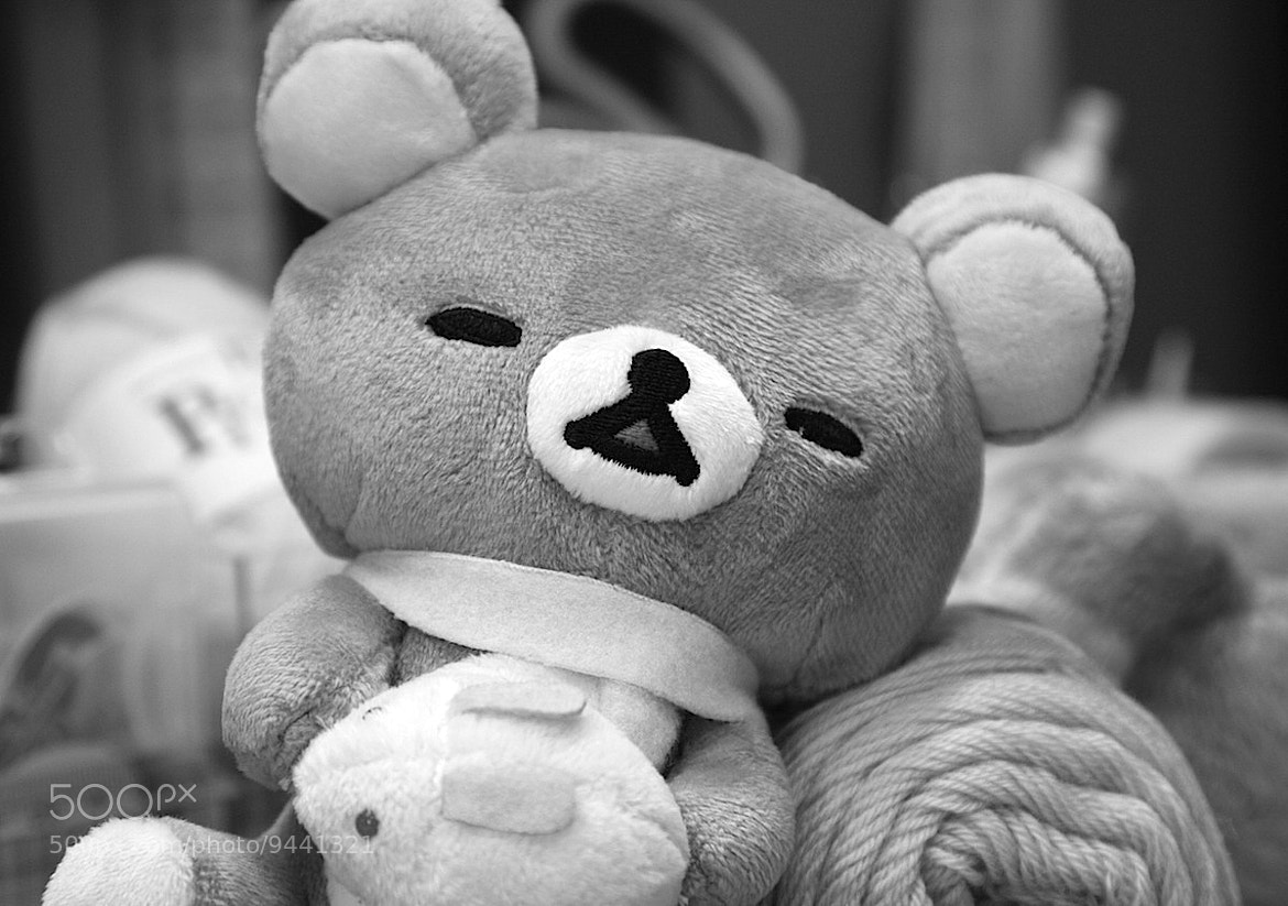 Photograph Sleepy Rilakkuma by Carrie Aiyuu ☆Event Gallery☆ on 500px
