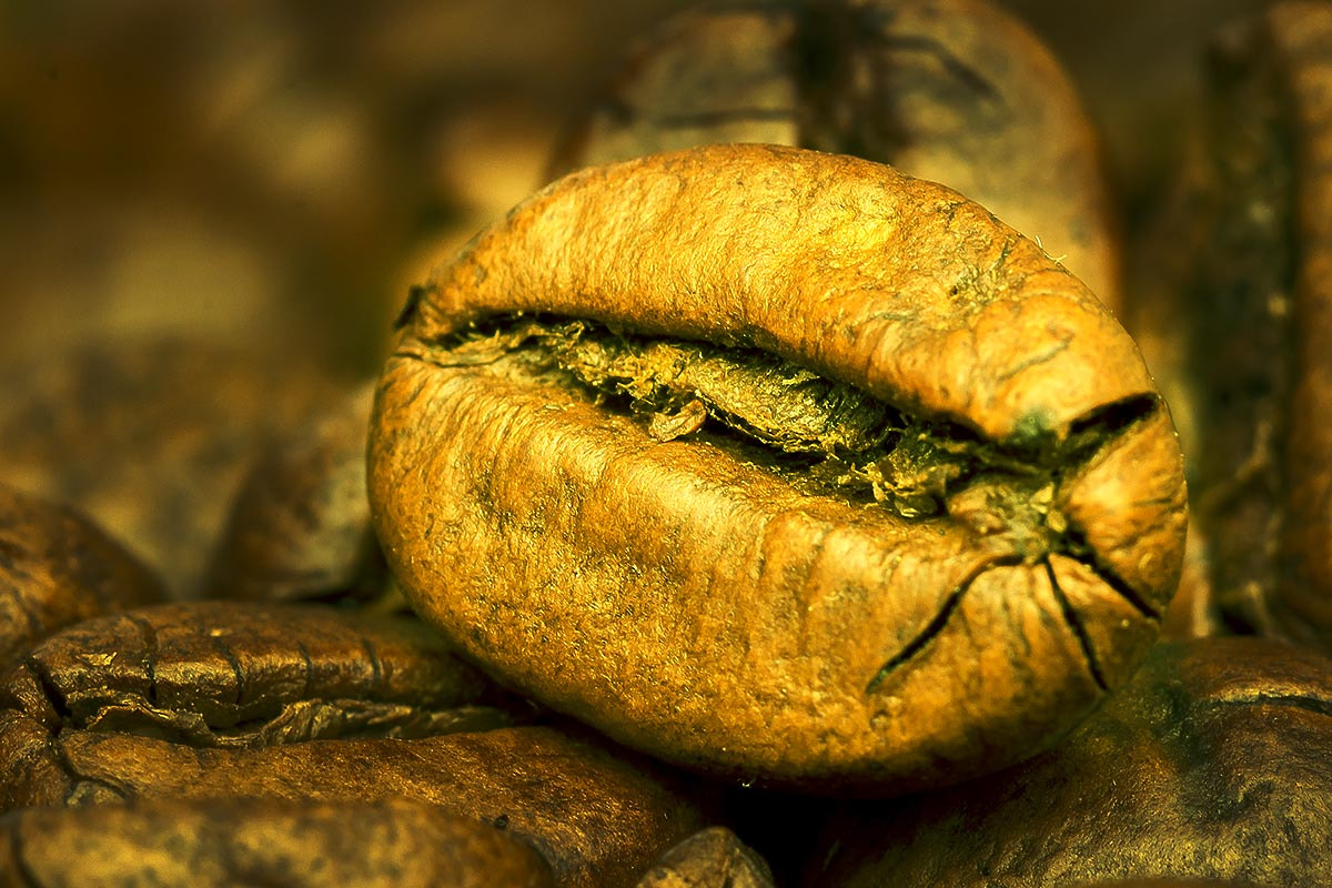 Photograph Golden coffee bean by Marcus Kam on 500px