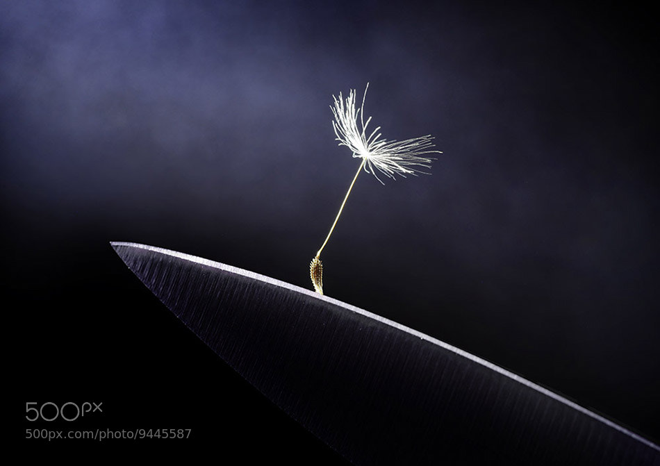 Photograph unstable equilibrium by Viacheslav Krasnoperov on 500px