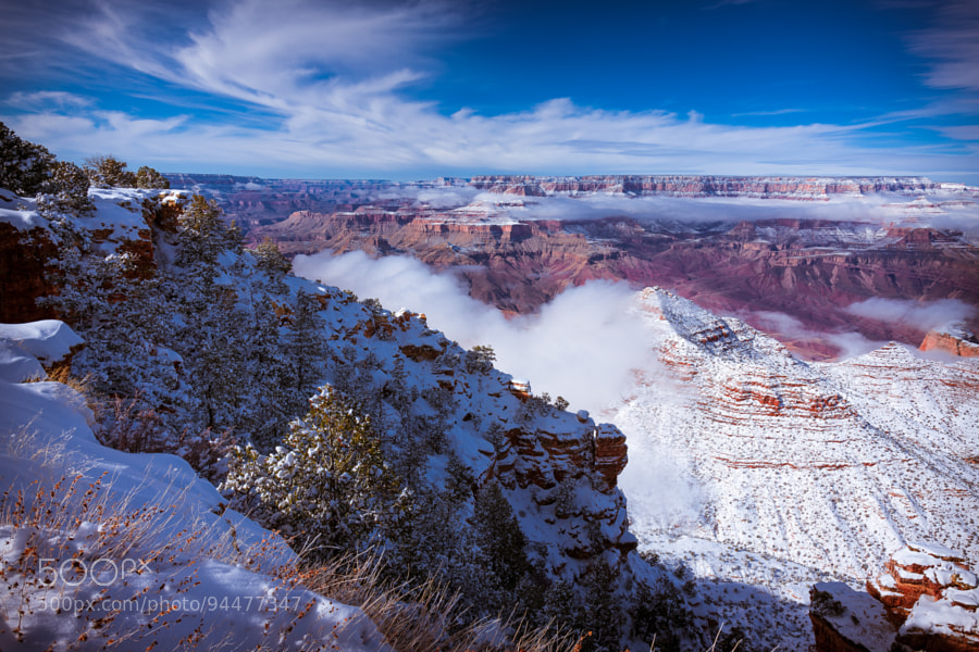 Photograph Winter Snowfall-Grand Canyon by Pat Kofahl on 500px