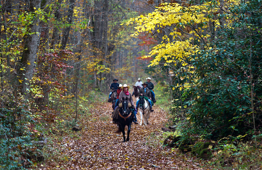 Photograph Equestrians on Middle Prong Trail by Frank Kinser on 500px