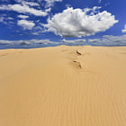 Постер, плакат: Sand Dune Day Vertical Panorama