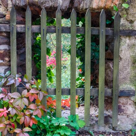 Der verbotene Garten