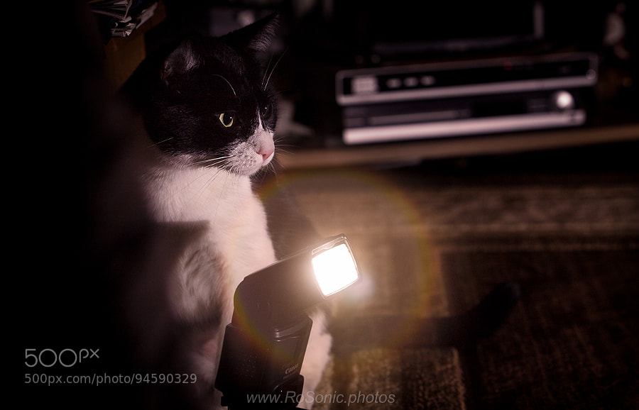 Photograph Light Assistant - v2 by Andrei Robu - RoSonic.photos on 500px