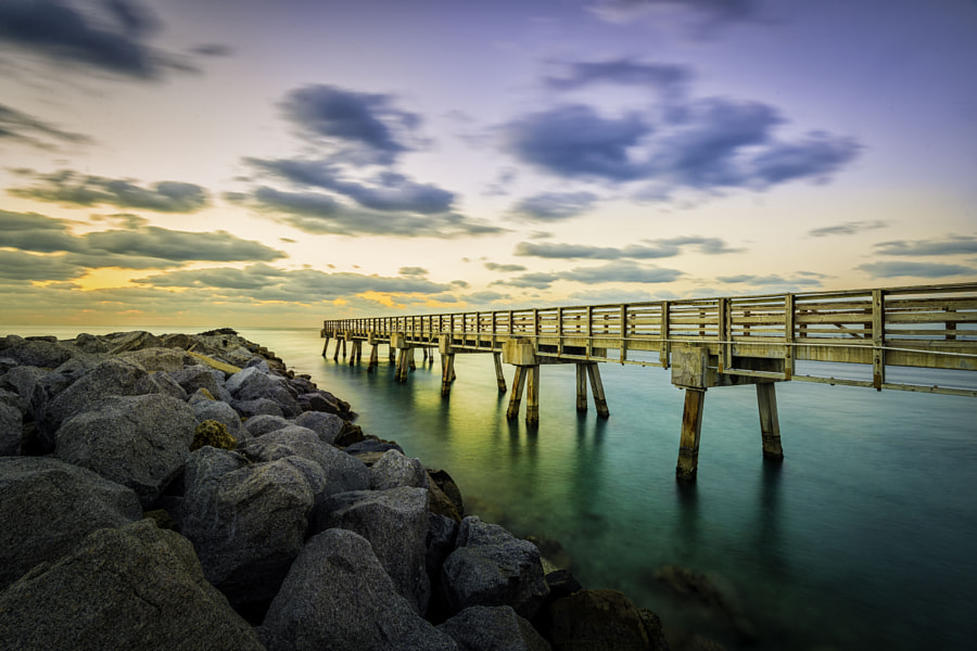 Old Miami Pier by Francisco Lujan - best places to visit in USA in December
