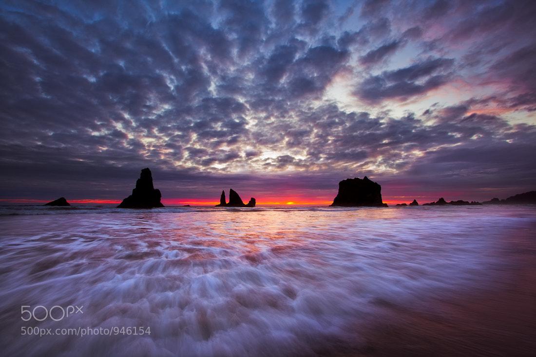 Photograph Elemental Mimics... by Jeremy Cram on 500px