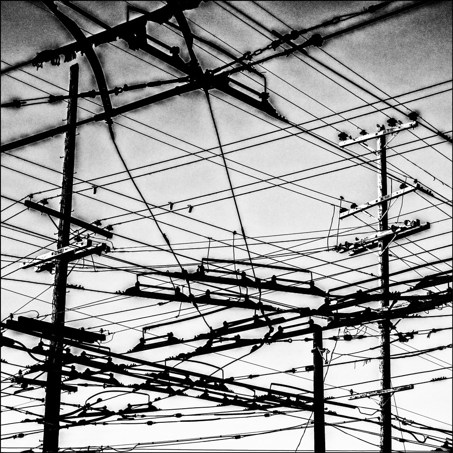 SF Wires 4