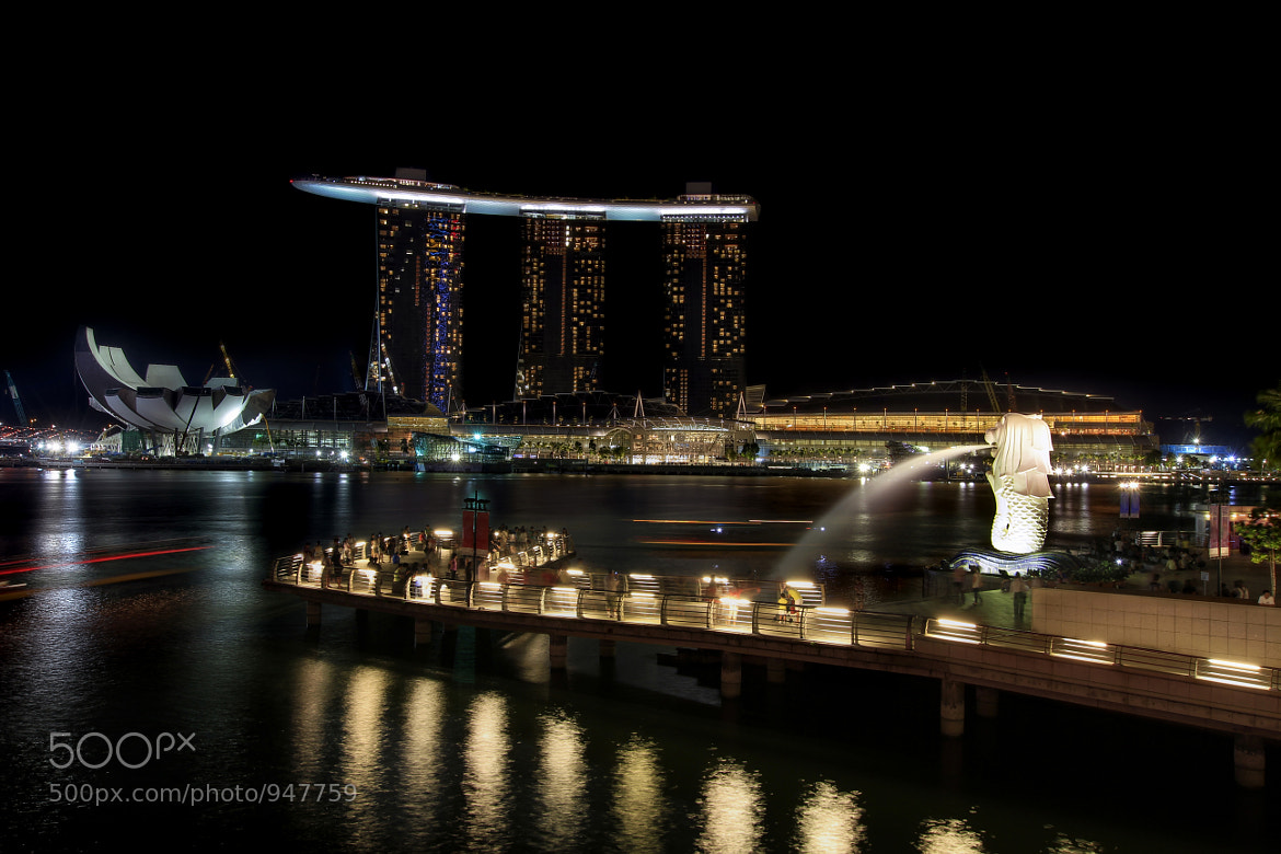 Photograph Merlion Park by Singapore Night Scene by David Gn on 500px