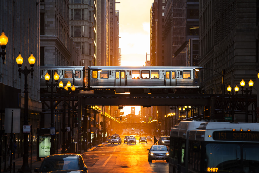 Last Light Chicago by Adam Alexander on 500px.com