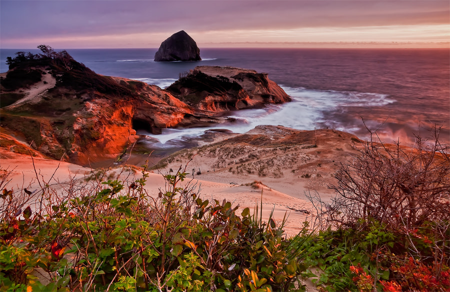 Photograph Sunglow on the Cliffs of Kiwanda by Carol Rukliss on 500px