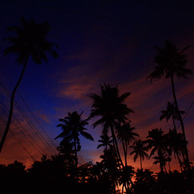 night sky of Kerala by Pranab Ghosh (PranabGhosh)) on 500px.com