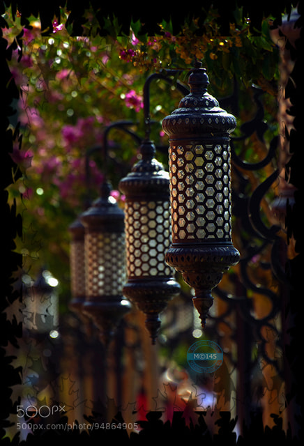 Photograph Street lights by Mehmet Çoban on 500px