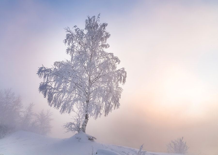 Frosty morning on Angara by Sergey Anikin on 500px.com