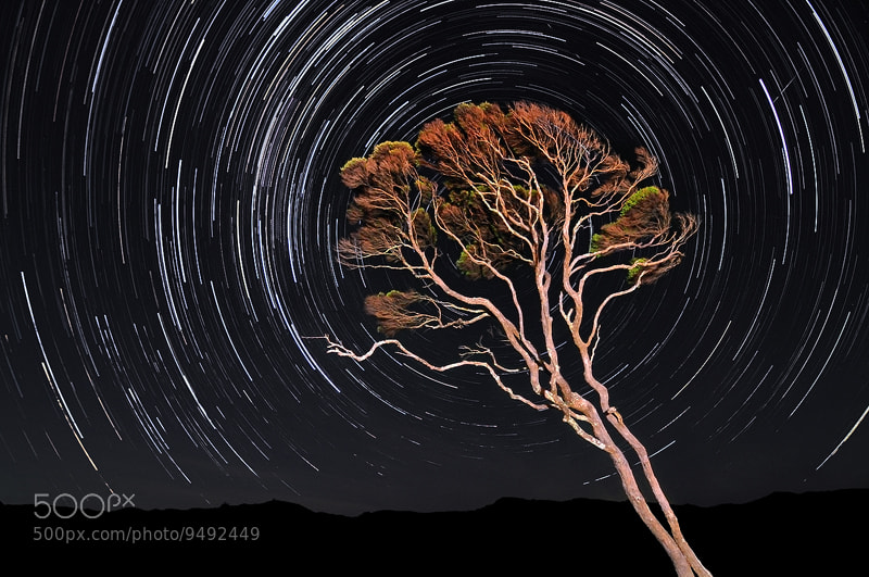 Photograph Wharariki Star Trails by Mike Isaak on 500px