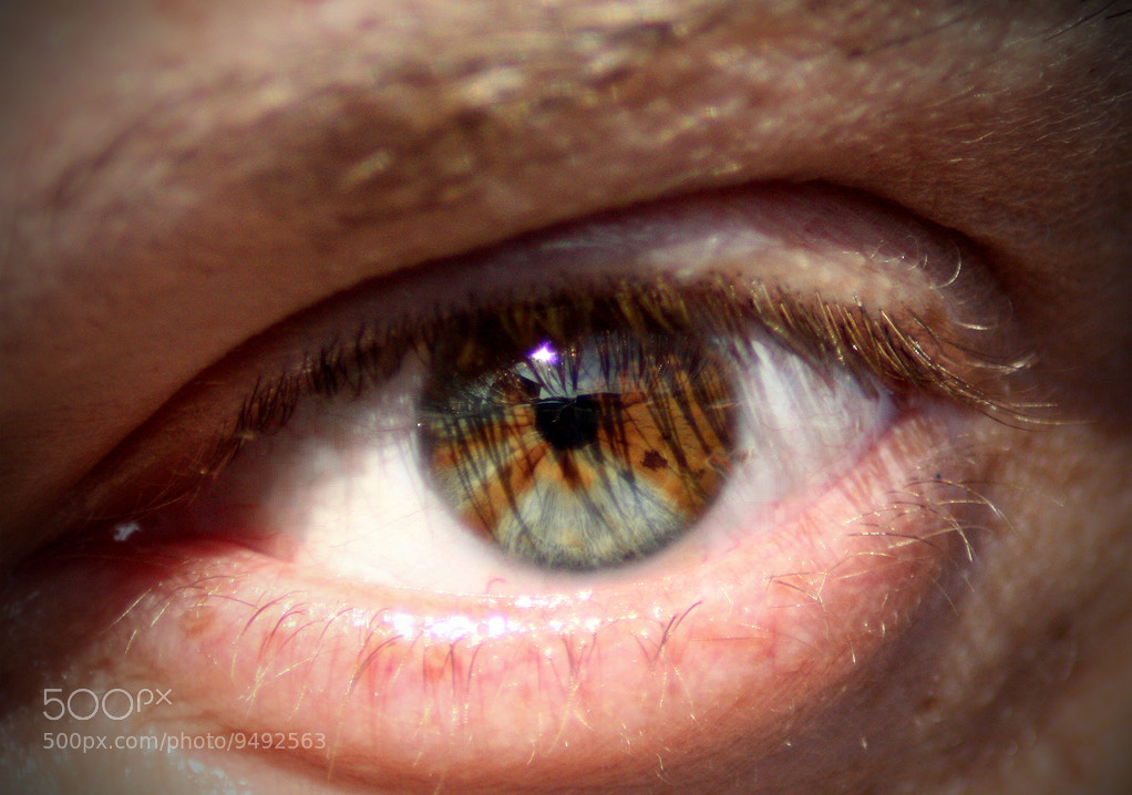 Photograph My Eye by Andrea Silvestri on 500px