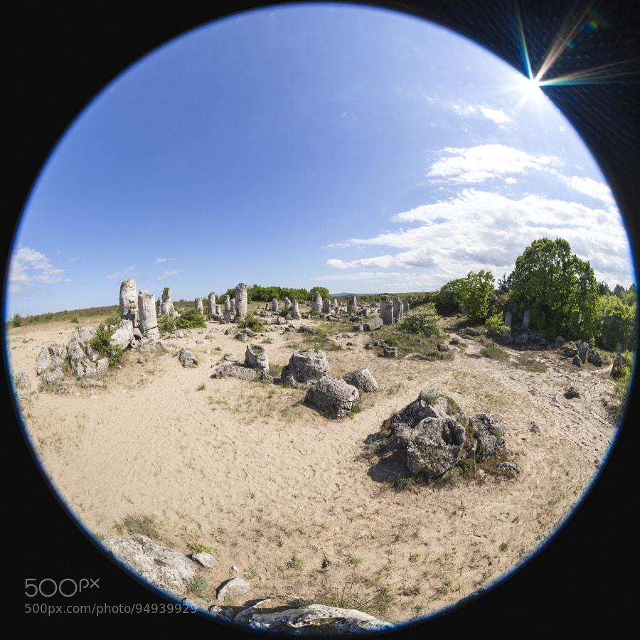 Болгария. Каменный лес. Побитите Камъни. Stone Forest (Pobiti Kamani) Panorama - the mystical experience. By Oleg Ivanov (straannick) on 500px