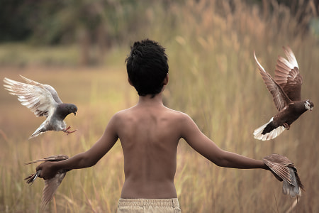 bird trainer by dewan irawan