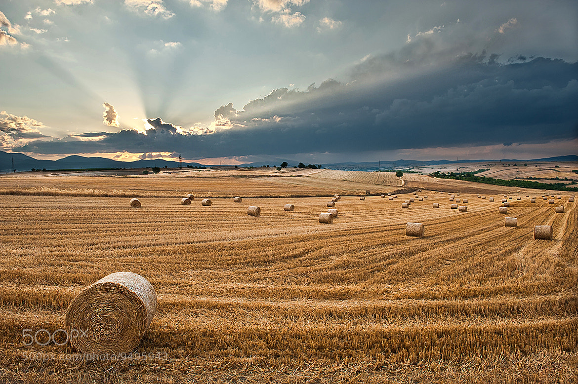 Photograph Hay balls by Nikos Koutoulas on 500px