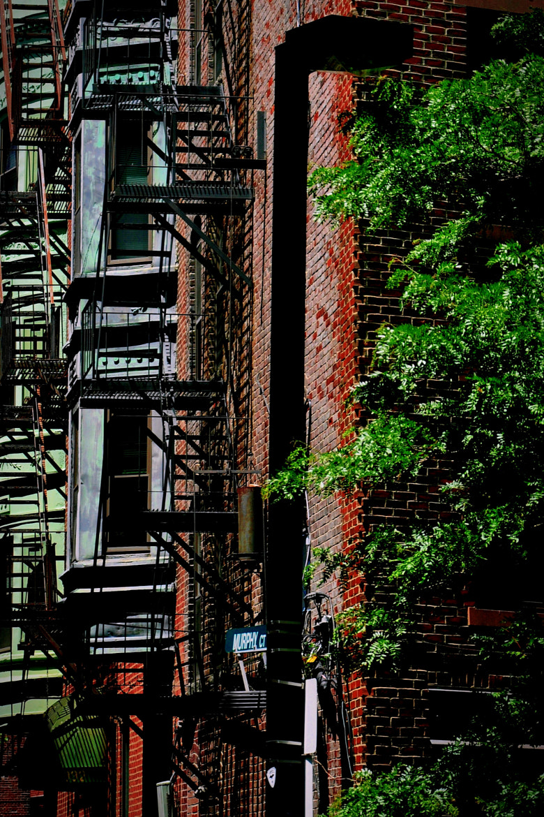 Photograph Boston Fire Escape by Candice Staver Harris  on 500px