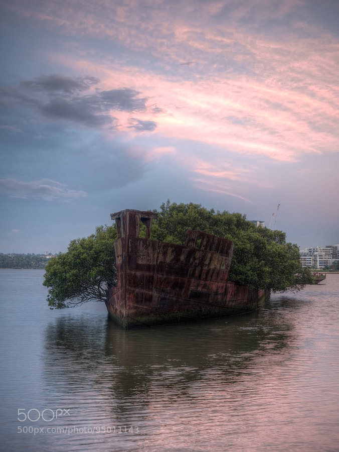 Photograph The Wreck at Homebush Bay by Des Paroz on 500px