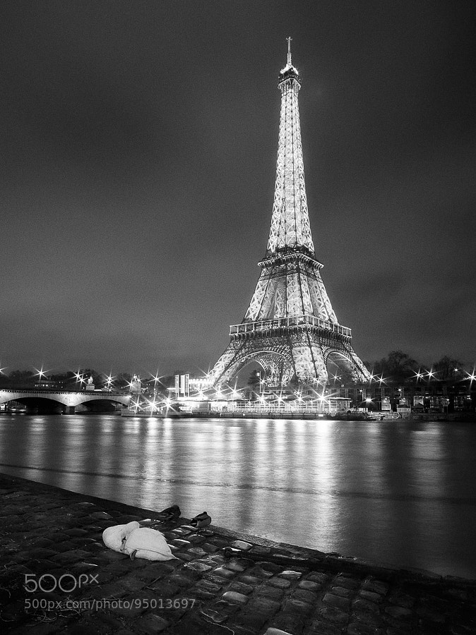 Photograph Paris Night by tatsushi yuasa on 500px