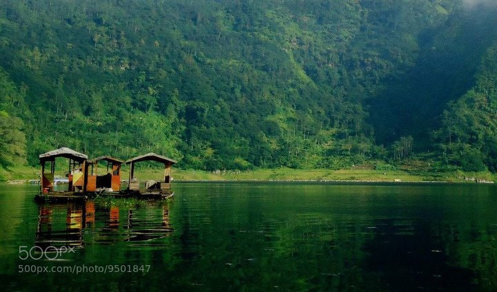 Photograph Hijau by Udhi Catur on 500px
