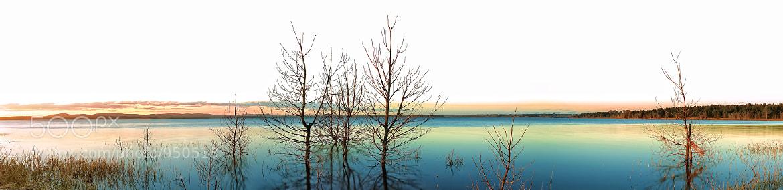Photograph Swan Bay by Timothy Poulton on 500px