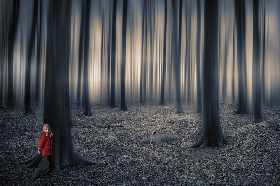 Lost in the Woods by Rickard Eriksson on 500px.com