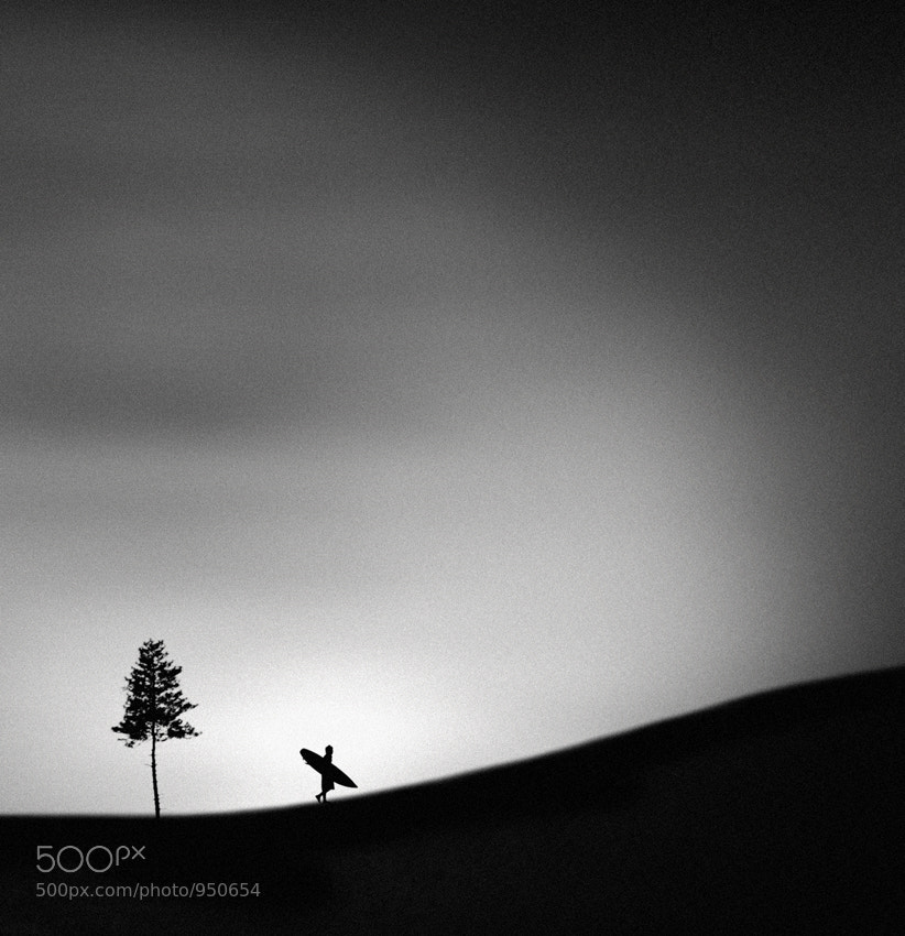 Photograph Adagio by Hengki Lee on 500px