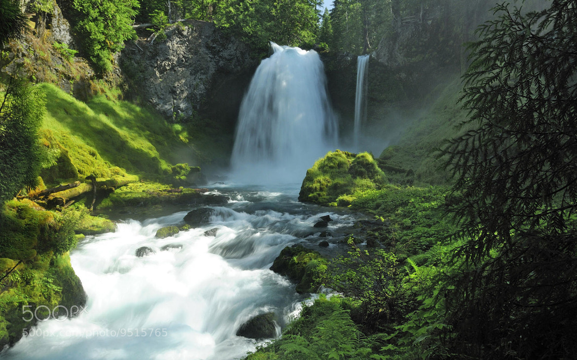 Photograph  McKenzie River by kamel Jago on 500px