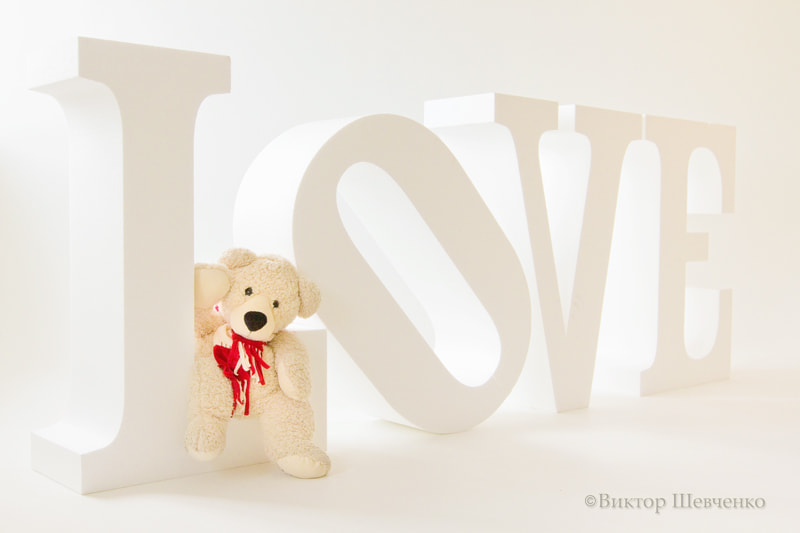 Photograph LOVE & White bear by Victor Shevchenko on 500px