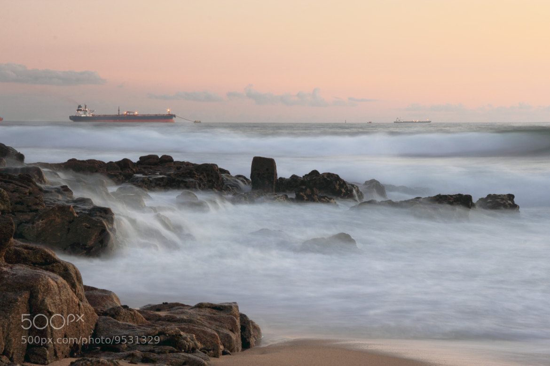 Photograph Seashore by Paulo César Silva on 500px