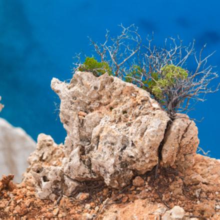 Zakynthos Island Blue Electric Color
