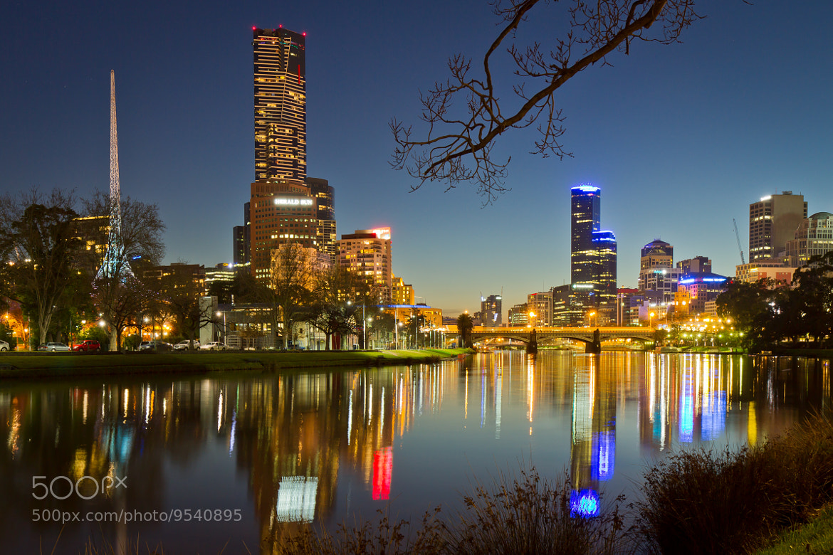 Photograph Blue hour in Melbourne by Tim McRae on 500px