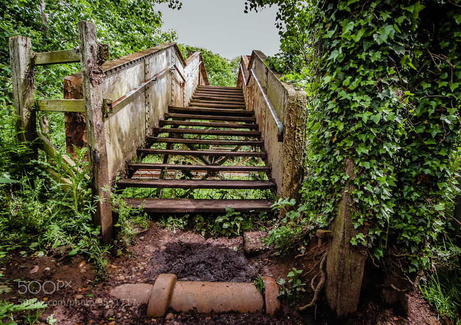 Photograph Footbridge by Dave Gregory on 500px