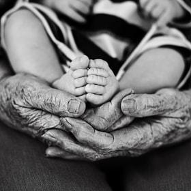 Great grandma's hands by Stephanie Beaty | Lifeography on 500px.com