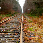 ������, ������: Lonely Tracks