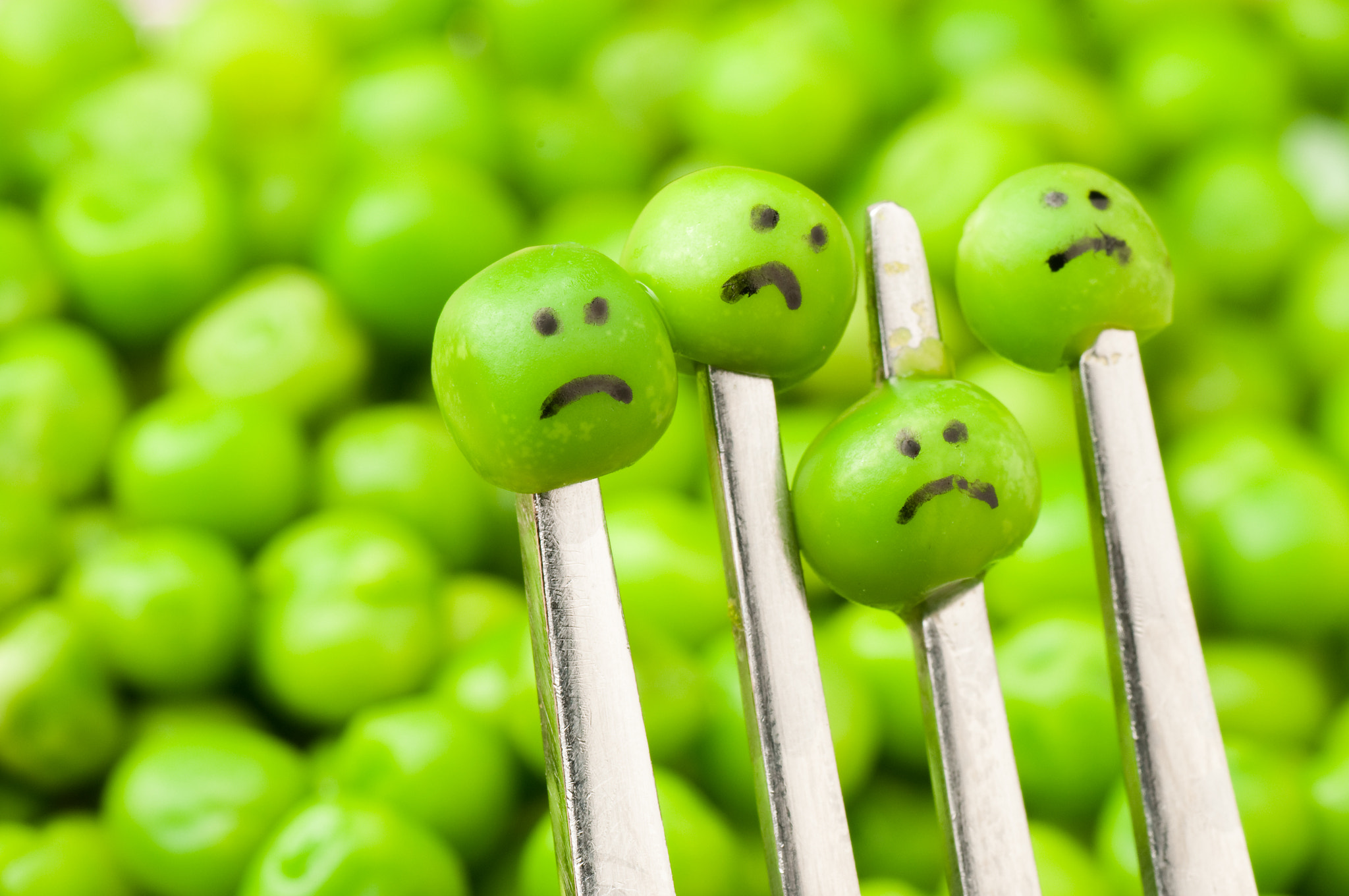 Photograph Sad looking peas on fork by Wijnand Loven on 500px