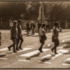 Постер, плакат: The craziness on Abbey road