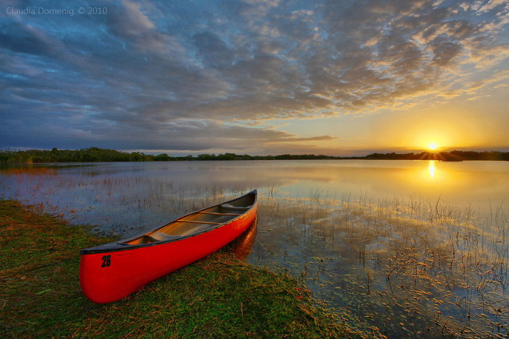 Photograph Sunrise in the Everglades by Claudia Domenig on 500px
