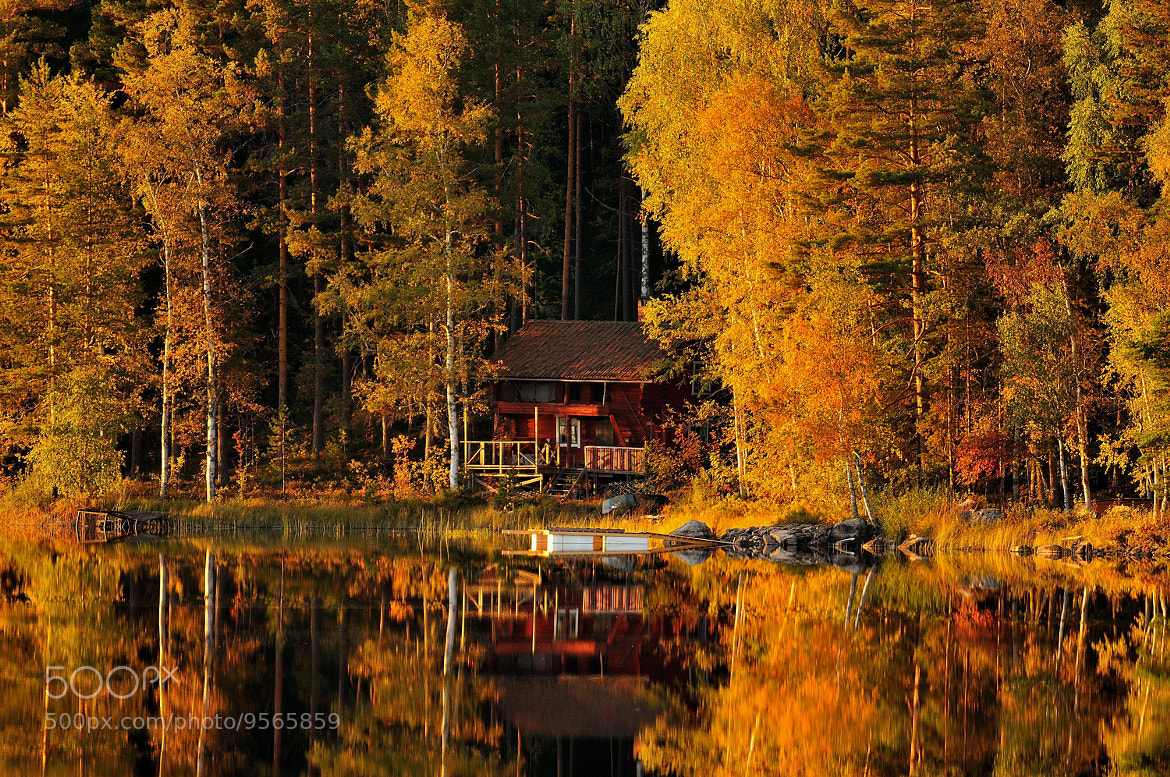 Photograph The colors of autumn by Ronnie Bergström on 500px