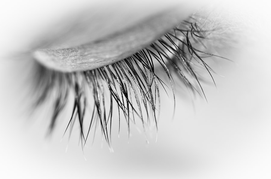 Macro Eyelashes in Mono by Gwen Yates on 500px.com