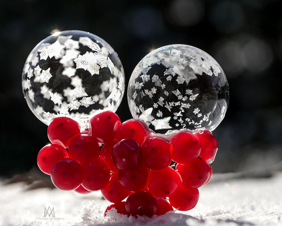 Bubbles & Berries