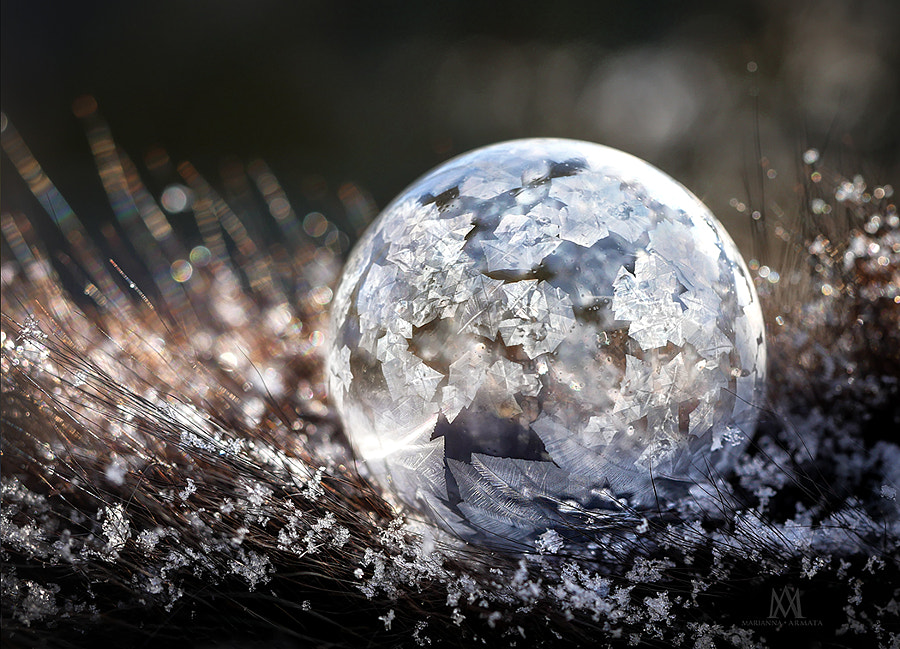 Nested Bubble