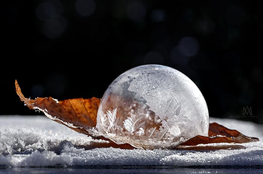 Frozen bubble boat