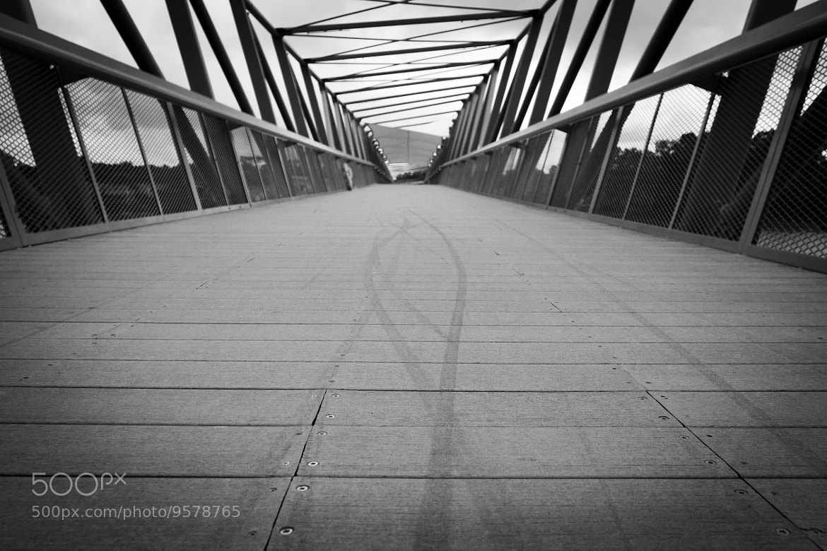 Photograph Let's Go, Together! by SiM0N  on 500px