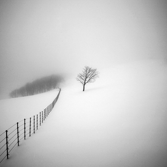 Photograph A Day in Snowy Lands #16 by Namdon Kim on 500px