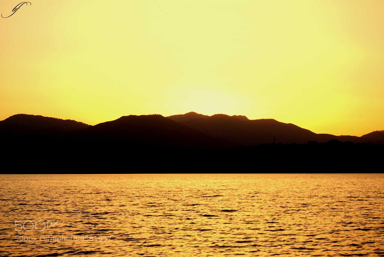 Photograph Yellow Mood by Burim Fejsko on 500px